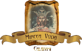 Școala Mircea Vodă Călărași